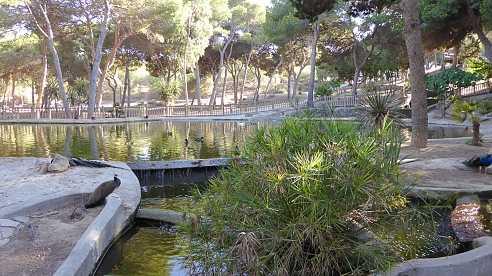 Het Reina Sofia Park Guardamar del Segura